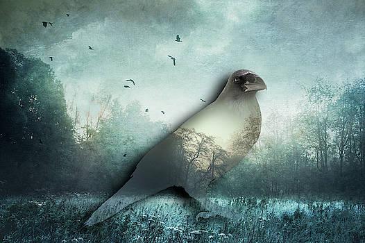 Raven - Double Exposure by Dirk Wuestenhagen