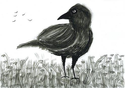 Raven by Steve Clarke