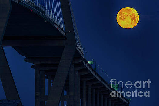 Ravenel Bridge and Supermoon by Thomas R Fletcher