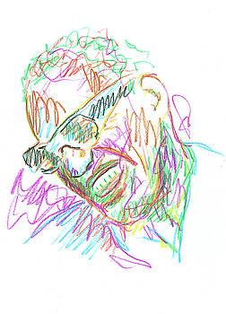 Ray Charles by Pekka Liukkonen
