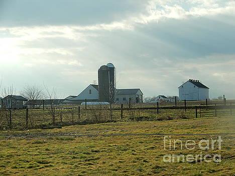 Christine Clark - Rays of Sunshine Over an Amish Farm