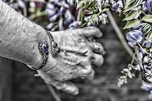 Sharon Popek - Reaching for Purple