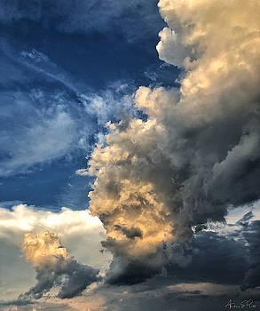 Reaching Toward Heaven by Andrea Platt