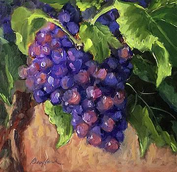 Ready for Harvest by Vikki Bouffard