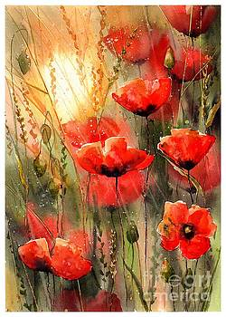Real Red Poppies by Suzann Sines