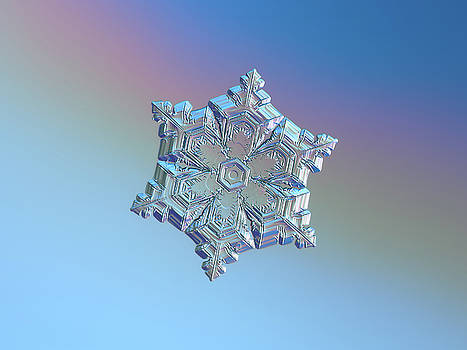 Real snowflake - 05-Feb-2018 - 12 by Alexey Kljatov