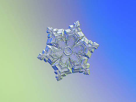 Real snowflake - 05-Feb-2018 - 12 alt by Alexey Kljatov