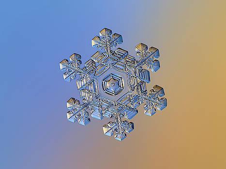Real snowflake - 05-Feb-2018 - 13 alt by Alexey Kljatov