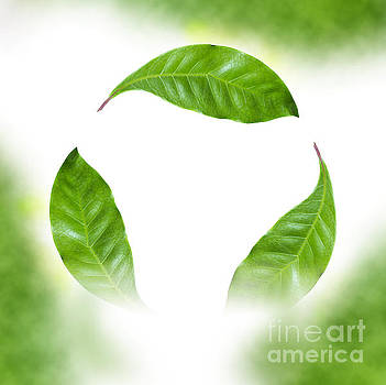 Recycle logo created from leafs j8 by Humorous Quotes