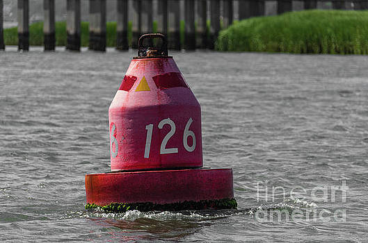 Red 126 Navigation Buoy by Dale Powell