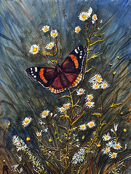 Red Admiral and Wild Aster by Katherine Miller