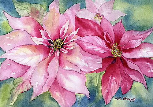 Red and Pink Poinsettias by Hilda Vandergriff