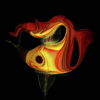 Red and Yellow Rose IV by Carel Schmidlkofer