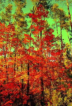 Henryk Gorecki - Red Autumn
