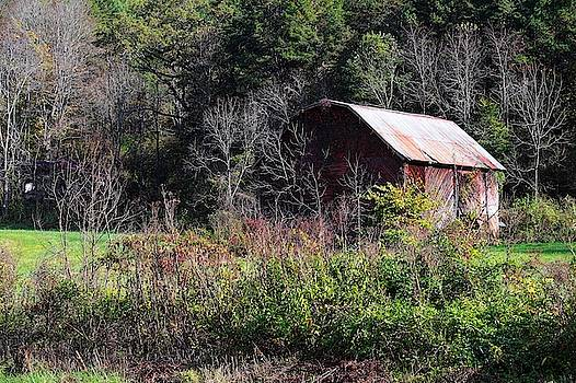 Red Barn Among The Brambles by Carol Montoya