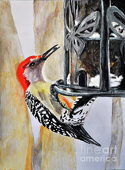 Red Bellied Woodpecker by Lori Moon