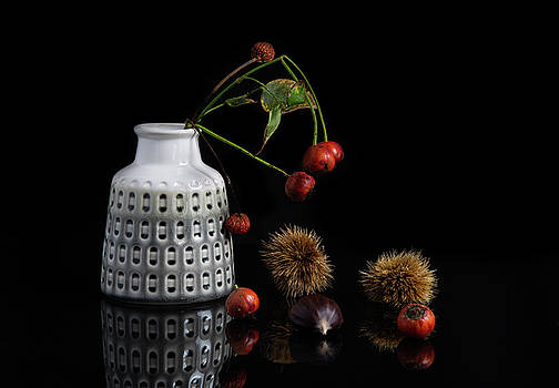 Red berry fruits on a white modern vase creating a beautiful abs by Michalakis Ppalis