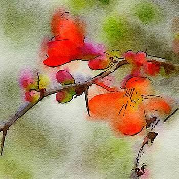 Bonnie Bruno - Red Blossoms