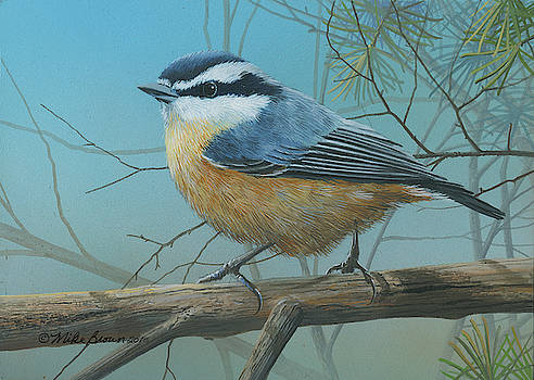 Red Brested Nuthatch by Mike Brown