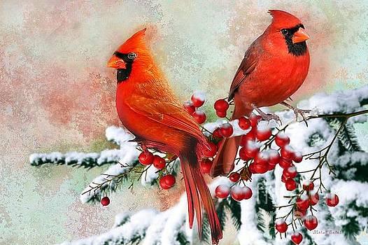 Red Cardinals by Morag Bates