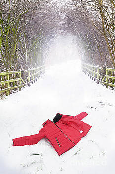Red Coat Abandoned In Snow by Lee Avison