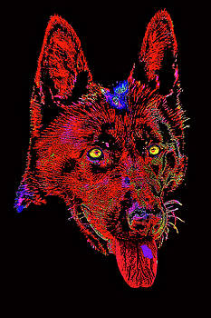 Red Dog. by Andy Za