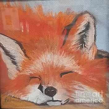 Red Fox by Barbara Haviland