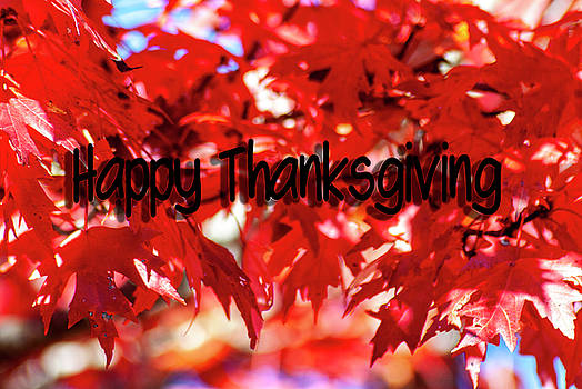Red Happy Thanksgiving by Annette Persinger