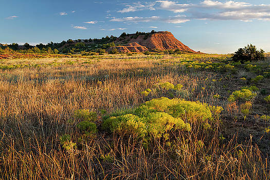 Red Hills Evening by Scott Bean