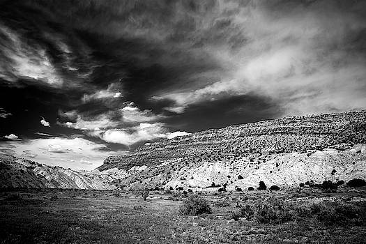 Red Mesa Black and White by Howard Holley