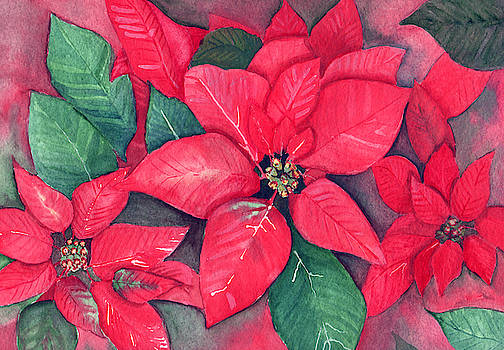 Red Poinsettias by Dorothy Riley