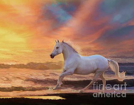 Red Sunset by Melinda Hughes-Berland