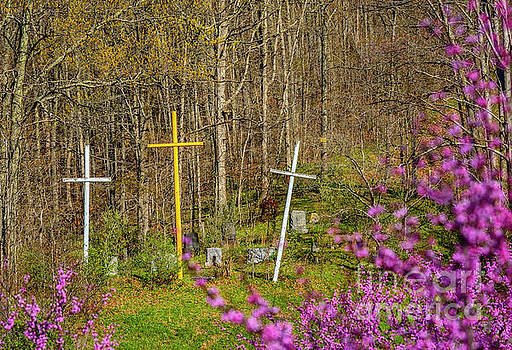 Redbud and Crosses  by Thomas R Fletcher
