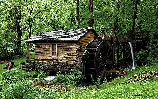 Reed Springs Mill  by Wesley Nesbitt