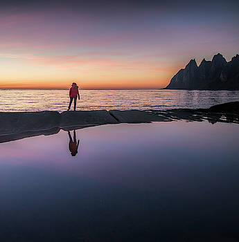 Reflection in the pond by Frank Olsen