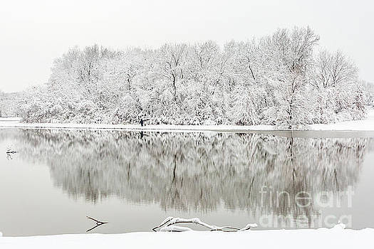 Reflections of Winter by Terri Morris