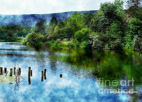 Reflections On A Summer Afternoon by Tami Quigley