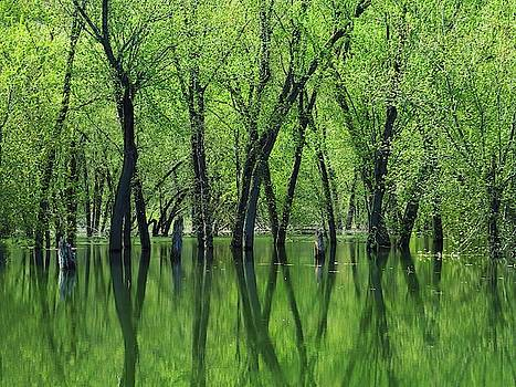 Reflections on the Yellow River  by Lori Frisch