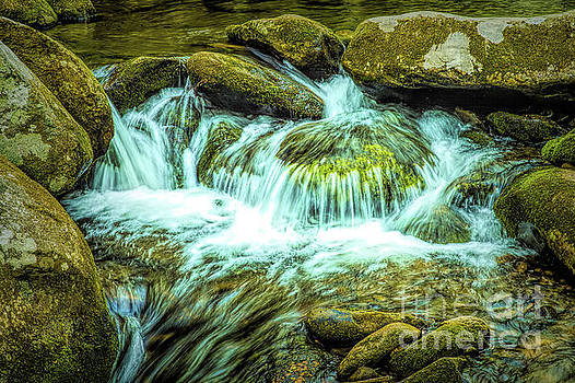 Relaxing view of Great Smoky Mountains National Park River by Stefano Senise