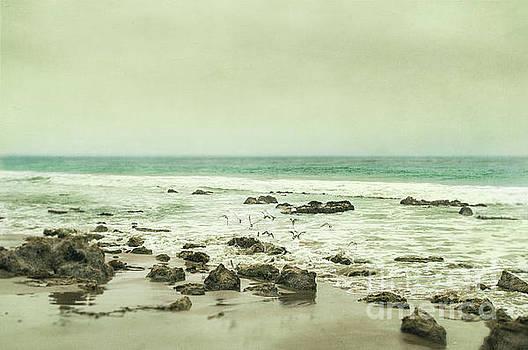 Release by Illumina Photographics