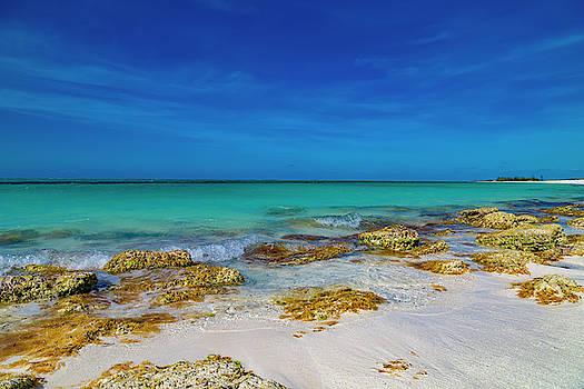 Remote Beach Paradise Turks and Caicos by Betsy Knapp