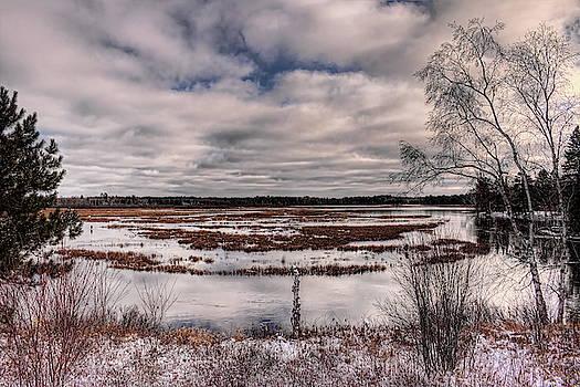 Dale Kauzlaric - Rhinelander Flowage Backwaters In White