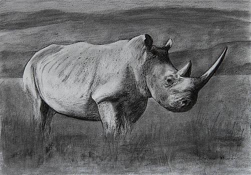 Rhino by Dawid Theron