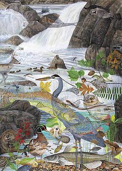 River Habitat by Trena McNabb