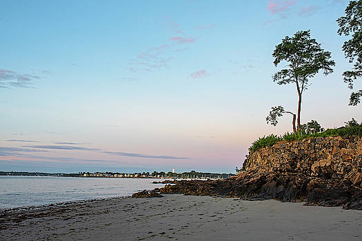 Toby McGuire - Rice Beach Sunrise Beverly MA Cliff Tree