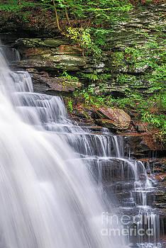 Rickett's Glen Waterfall by Sharon Seaward