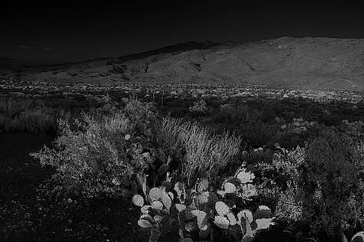 Chance Kafka - Rincon Mountains in Black and White