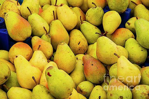 Bob Phillips - Ripe Pears