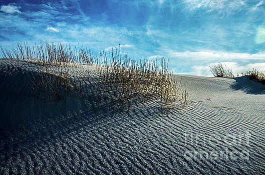 Stephen Whalen - Rippled Dunes