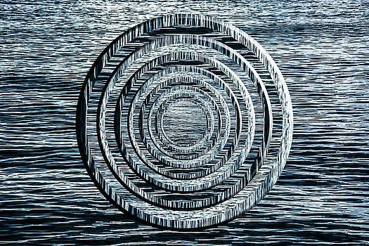 Pelo Blanco Photo - Rippled Water Circles